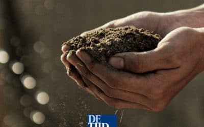 De Tijd: Time to opt for sustainable investments